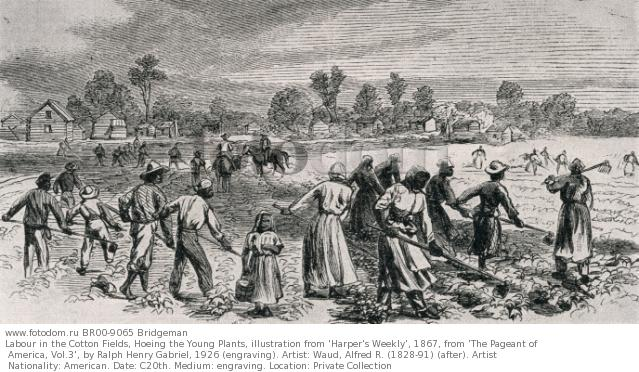 slavery economy and the south