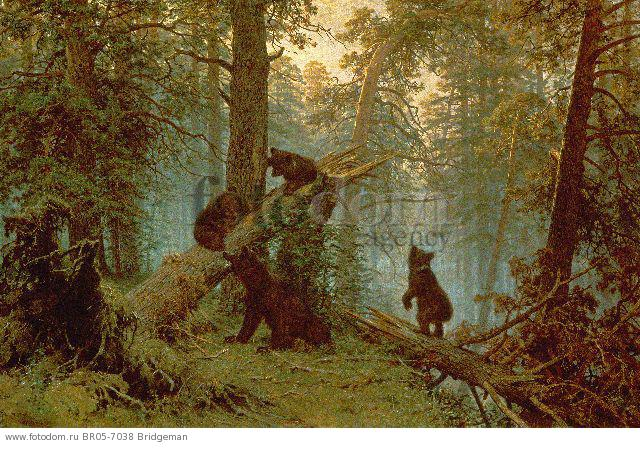 Morning in a Pine Forest, 1889 (oil on canvas) , artist: Shishkin, Ivan Ivanovich (1832-98)