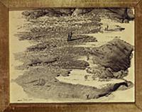 Surrealist Landscape, 1936 (black ink on paper) ,