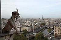 696455 View over Paris from Notre Dame Cathedral;