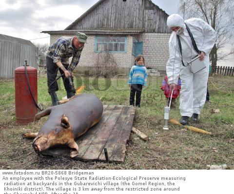 An employee with the Polesye State Radiation-Ecological Preserve measuring radiation at backyards in the Gubarevichi village (the Gomel Region, the Khoiniki district). The village is 3 km away from the restricted zone around the Chernobyl NPP. After the 19