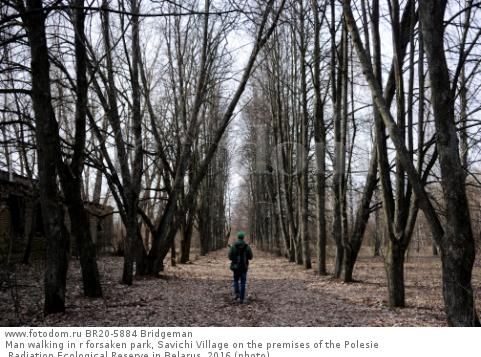 Man walking in r forsaken park, Savichi Village on the premises of the Polesie Radiation Ecological Reserve in Belarus, 2016 (photo)