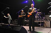 Концерт группы «The Sonics»