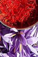 Stigmas collected from Saffron Crocus flowers. 'Sa