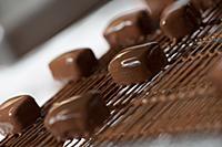 Making chocolates at Maison Guinguet. Sainte-Colom