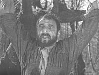 палиастоми (1963)