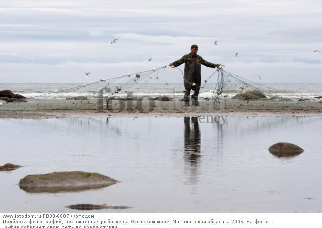когда лучше ловить рыбу в прилив или отлив