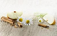 Chamomile, Chamaemelum nobileon. Three flowers arr