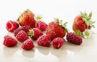 Raspberry, Rubus idaeus cultivar and Strawberry, F