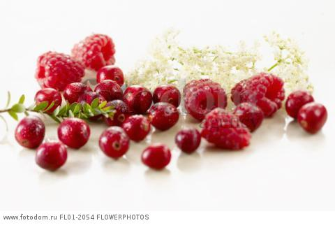 Cranberry, Vaccinium oxycoccos, several berries with a sprig of leaves, and with raspberries and elderflowers. Arranged on white marble. Selective focus.