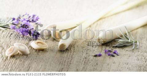 Lemon grass, Cymbopogon citratus stems and slices arranged with lavender, Lavandula augustifolia on pale, distressed, wooden background. Selective focus.