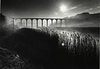 Picture by Roger Bamber : 1977 : Calstock Viaduct