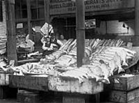 1917 Fish Stall