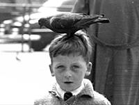 Pigeon Square - June/July 1955
