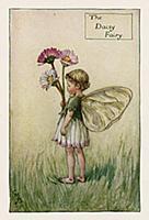 Весенние феи: фея цветов маргаритки