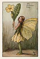 Весенние феи: фея цветов примулы