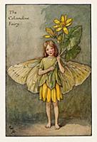 Весенние феи: фея цветов чистотела