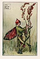 Летние феи: фея цветущего щавеля