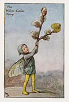 Весенние феи: фея цветущей ивы