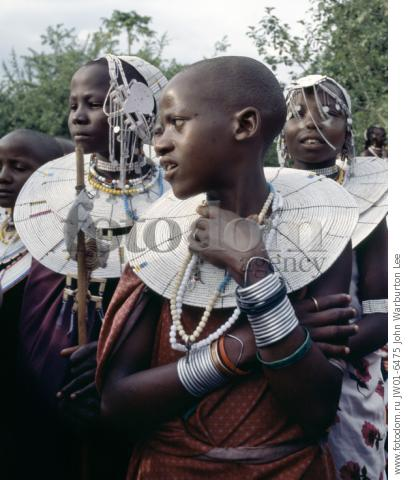 Tanzania, Northern Tanzania, Engaruka. Maasai girls gather to celebrate a wedding.  Their broad beaded necklaces with predominantly white glass beads mark then as Kisongo Maasai, the largest clan group of the tribe which lives either side of the Kenya-Tanzania border.