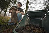 'European Beaver (Castor fiber) trapped by Gerhard