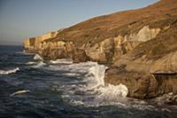 'Coastline, Tunnel Beach, Otago Peninsula, Otago,