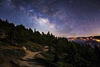 Фотографии дикой природы от фотографа Aaron Keigher