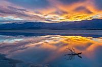 Дикая природа от фотографа Jeff Foott