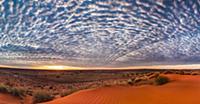 Дикая природа Австралии