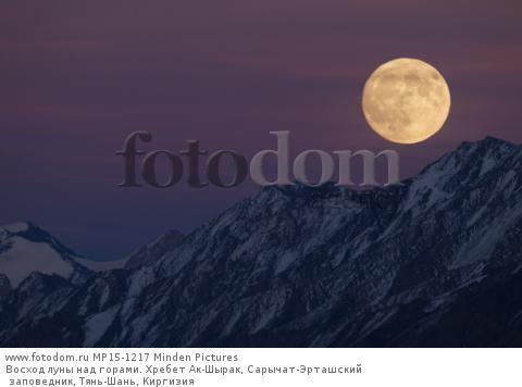 Восход луны над горами. Хребет Ак-Шырак, Сарычат-Эрташский заповедник, Тянь-Шань, Киргизия