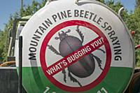 Mountain Pine Beetle (Dendroctonus ponderosae) era