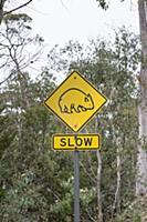 Common Wombat (Vombatus ursinus) road warning sign
