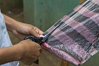 Cotton-top Tamarin (Saguinus oedipus) conservation