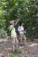 Cotton-top Tamarin (Saguinus oedipus) biologists,
