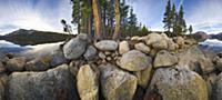 Coniferous trees and massive boulders along Tenaya