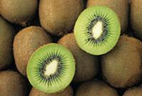 Kiwifruit (Actinidia deliciosa) with on cut in hal