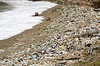 Polluted beach, Dominican Republic, Caribbean