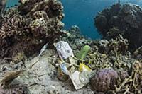 Plastic trash in coral reef, Gili Air, Lesser Sund