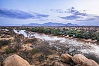 Ewaso Ng'iro River, Westgate Community Conservancy