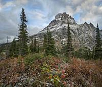 Rising Wolf Mountain, Glacier National Park, Monta