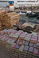 Unloading cargo on the dock, Puerto Ayora, Santa C
