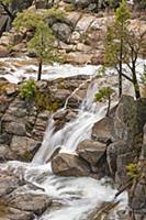 Spring run-off, Cascade Creek, Yosemite National P