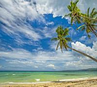 Tropical beach, Siquijor Island, Philippines