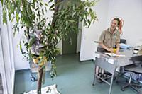 Koala (Phascolarctos cinereus) sick with KoRV retr