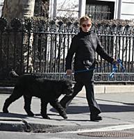 Джессика Лэнг гуляет с собакой