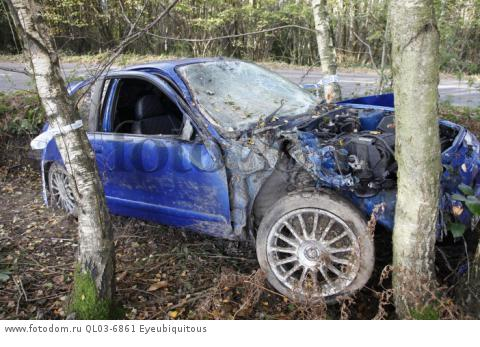 Transport, Road, Cars, Accident, Rover car crashed into tree.