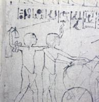 A master sketch on stucco from an Amarna tomb. The