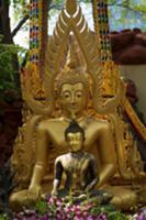 Buddha statue in garden