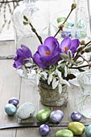 Spring posy of purple crocuses, snowdrops and will