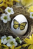 Egg with butterfly motif in Easter nest